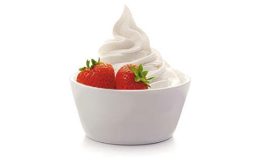 Ice yogurt and juices factory