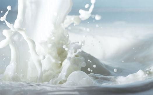 Milks factory