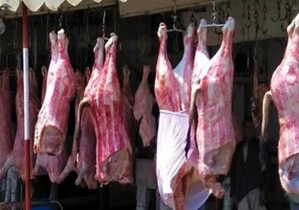 دراسة الجدوى مشروع أسواق اللحوم باستثمار 240 ألف دولار