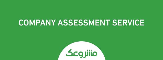 Company and Institutions assessment service